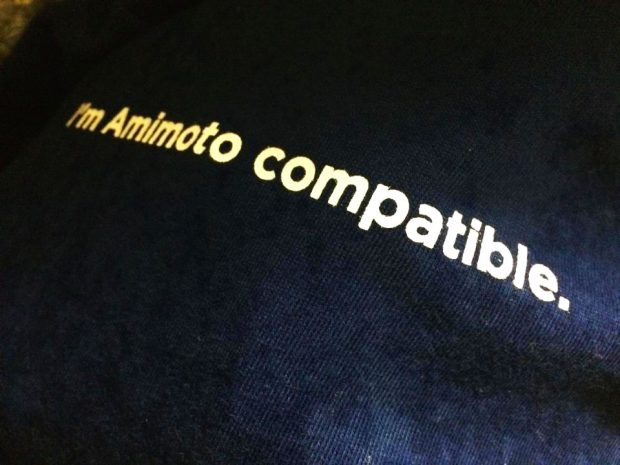 amimoto-T